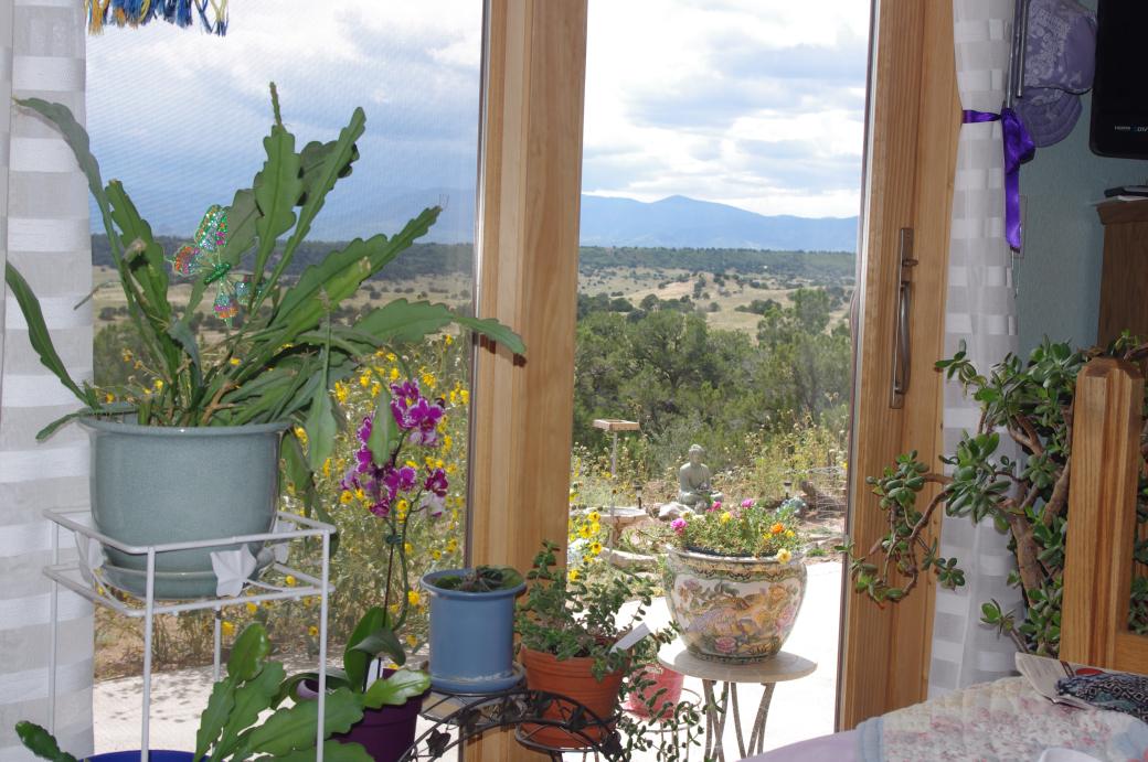 garden scene outside my bedroom door