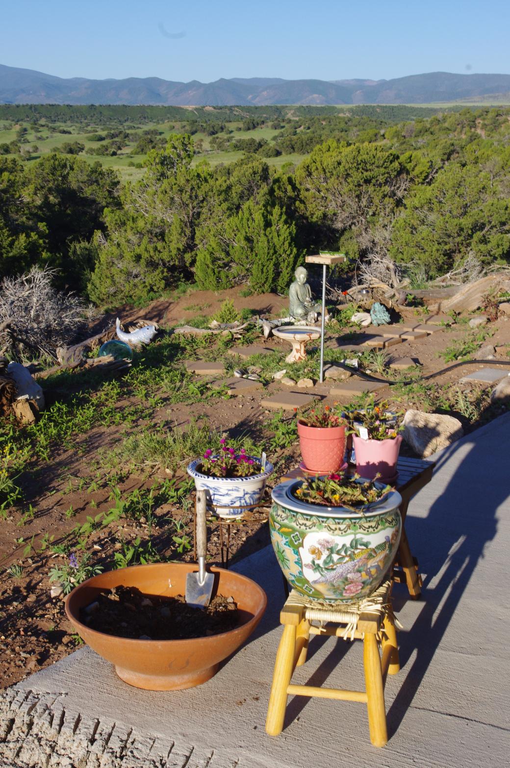 nice garden scene at comanche drive