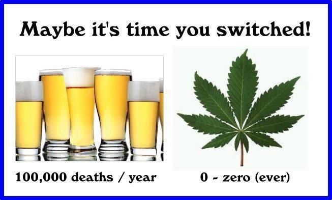 deaths from alcohol vs marijuana