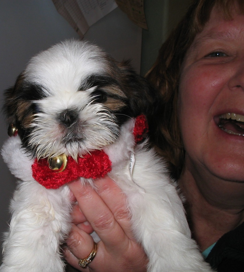 The day I got Rasta in 2008