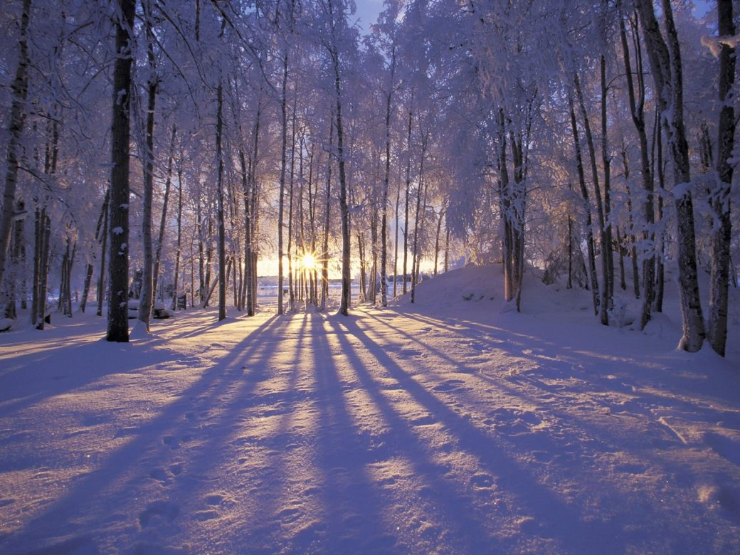 snowy Winter Solstice